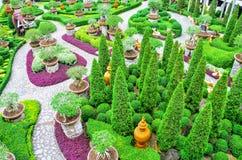 Giardino botanico tropicale di Nong Nooch Immagini Stock Libere da Diritti