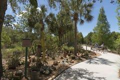 Giardino botanico U.S.A. di Florida Immagini Stock