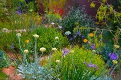 Giardino Chelsea Flower Show di manifestazione di G & di m. Fotografia Stock
