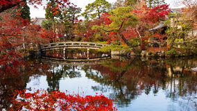 Giardino con i colori di autunno, Kyoto di Eikando Immagini Stock Libere da Diritti