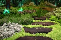 Giardino con il paesaggio di legno del percorso fare un passo Fotografia Stock Libera da Diritti