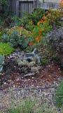 Giardino costiero Immagini Stock Libere da Diritti