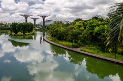 Giardino dalla baia, Singapore Immagini Stock Libere da Diritti
