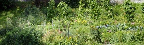 Giardino degli agricoltori nel sole Immagini Stock Libere da Diritti