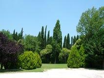 Giardino degli alberi Fotografia Stock
