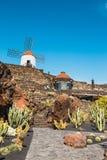 Giardino del cactus in Guatiza, attrazione popolare a Lanzarote, isole Canarie Fotografia Stock