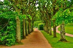 Giardino del castello di Gunebbo Fotografia Stock