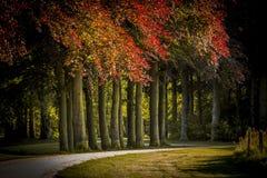 Giardino del castello nei Paesi Bassi Fotografia Stock