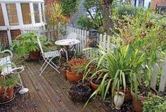 Giardino del cottage del paese di inverno Immagine Stock