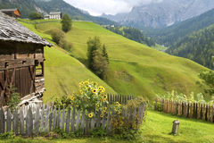 Giardino del cottage nelle alpi Immagine Stock