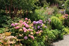 Giardino del cottage sull'isola di Garinish in Irlanda di estate fotografia stock
