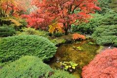 Giardino del giapponese di autunno immagine stock libera da diritti