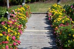 Giardino del passaggio pedonale del fiore in Chachoengsao Tailandia immagini stock libere da diritti
