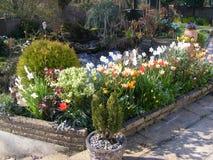 Giardino del patio con il confine e lo stagno del fiore Fotografie Stock