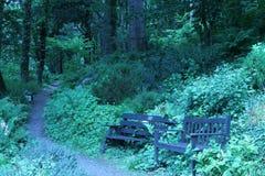 Giardino del terreno boscoso a TÅ· Hyll, la Camera brutta, Galles del nord Fotografie Stock Libere da Diritti