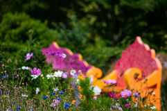 Giardino del Wildflower e spazio di rilassamento all'aperto dei banchi fotografia stock libera da diritti