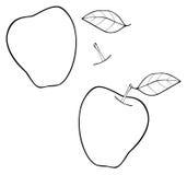 Giardino delizioso - elabora la mela della costruzione con una foglia Immagini Stock