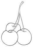 Giardino delizioso - tre ciliege si sono collegate insieme ad una stanza Fotografia Stock