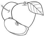 Giardino delizioso - un insieme di due mele con una fetta e una foglia Immagini Stock