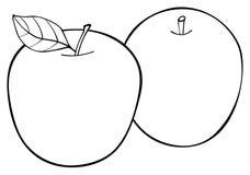 Giardino delizioso - un insieme di due mele con una foglia Fotografia Stock