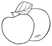 Giardino delizioso - un insieme di due mele rotonde con una foglia Immagine Stock Libera da Diritti