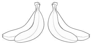 Giardino delizioso - un mazzo di due banane Immagini Stock Libere da Diritti