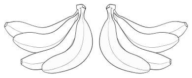 Giardino delizioso - un mazzo di quattro banane Fotografia Stock Libera da Diritti