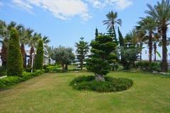 Giardino dell'hotel della spiaggia Fotografie Stock