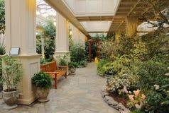 giardino dell'interno Fotografia Stock Libera da Diritti
