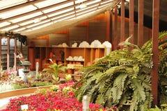 Giardino dell'interno e strumentazioni di giardinaggio fotografia stock