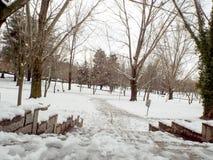 Giardino della copertura di neve Fotografia Stock Libera da Diritti