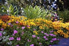 Giardino della proprietà Fotografie Stock