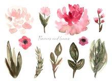 Giardino della raccolta e selvaggio, erba della foresta, fiori, rami illustrazione di stock