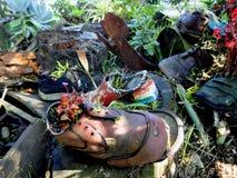 Giardino della scarpa Fotografie Stock