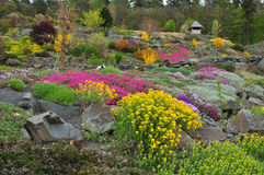 Giardino delle piante Fotografia Stock