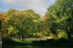 Giardino di autunno Fotografia Stock