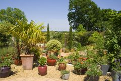 Giardino di estate Fotografie Stock