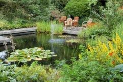 Giardino di estate con uno stagno Fotografie Stock