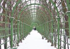 Giardino di estate in San Pietroburgo Immagine Stock Libera da Diritti