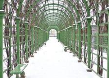 Giardino di estate in San Pietroburgo Immagine Stock