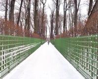 Giardino di estate in San Pietroburgo Fotografie Stock Libere da Diritti
