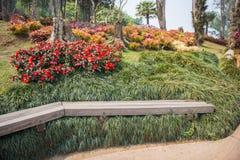 Giardino di Fahrenheit Luang di Mae Chiangrai, Tailandia immagine stock libera da diritti
