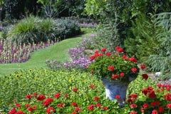Giardino di fiore Immagini Stock