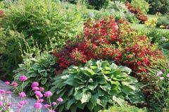 Giardino di fiore nordico Fotografia Stock