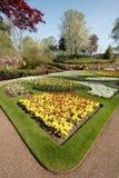 Giardino di fiore in primavera, Inghilterra. Fotografie Stock Libere da Diritti