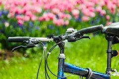 Giardino di fiori della bicicletta fotografia stock