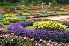 Giardino di fiori variopinto Immagini Stock
