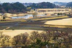 Giardino di Kairakuen Fotografie Stock Libere da Diritti