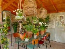 Giardino di Keukenhof Immagine Stock Libera da Diritti