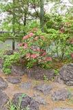 Giardino di Kokoen vicino al castello di Himeji, Giappone Immagine Stock Libera da Diritti